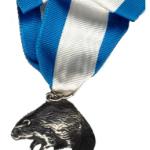 silver-beaver