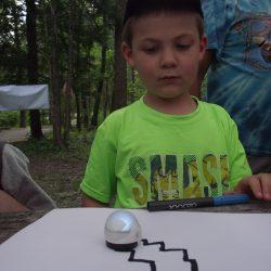 2016 Cub Adventure Robots